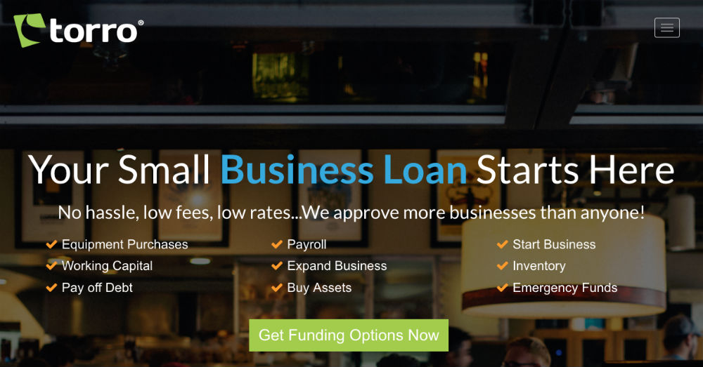 Torro Business Loan Review